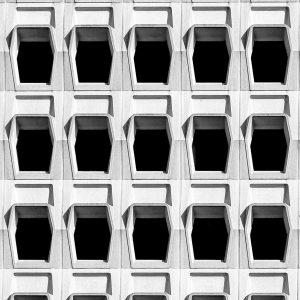 prachtige zwart wit foto